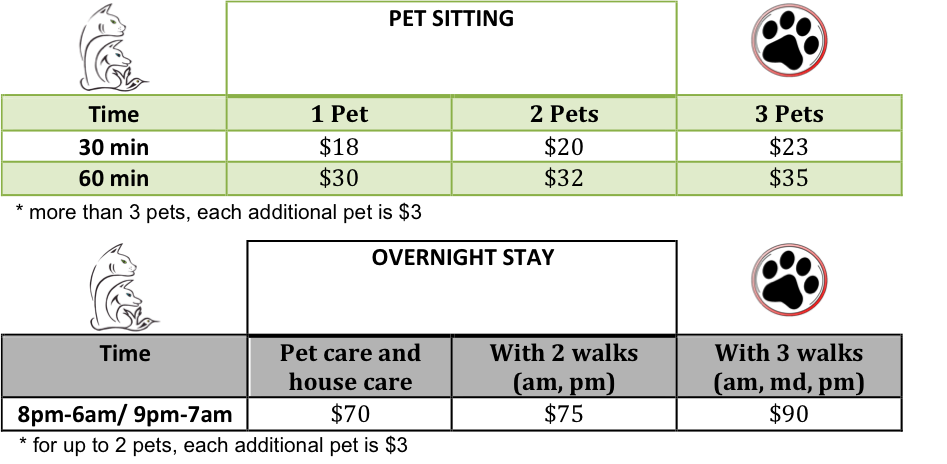 Dog Day Care Prices